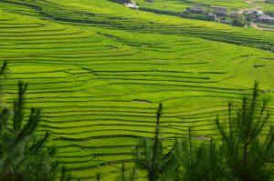 agence voyage vietnam