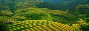 Voyage Vietnam, Agence de voyage Vietnam