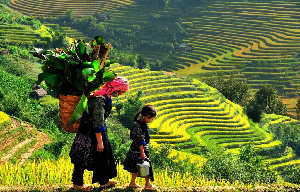 agence voyage sure mesure vietnam