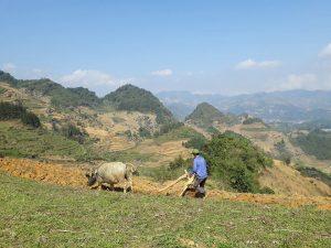voyage vietnam nord 3 semaines